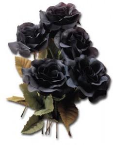 Где купить черные розы в хабаровске день святого валентина подарок d vfibye мужчине