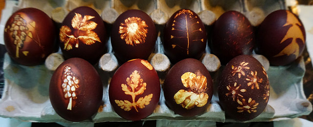 Dye Easter Eggs With Flowers & Use Petals for Designs