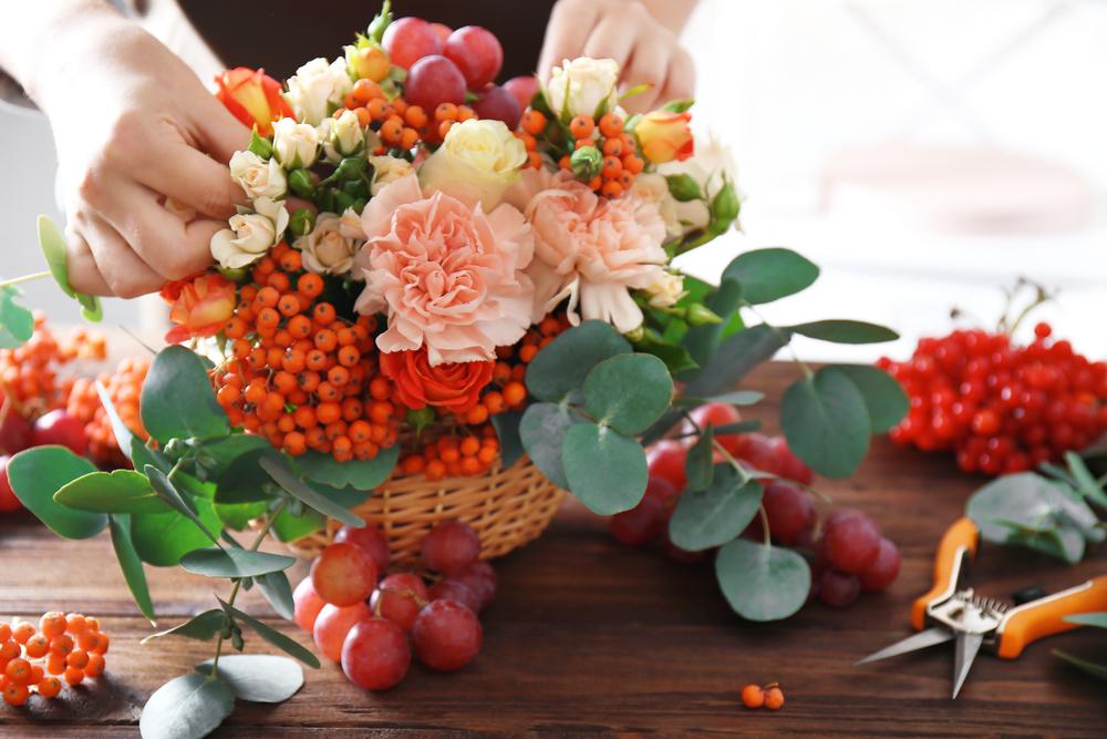 January Birth Flower - Carnations