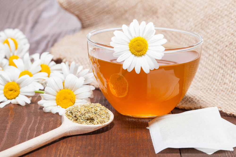 Russia's National Flower: Chamomile -- Composition of chamomile tea, fresh flowers and dried chamomile on wooden table