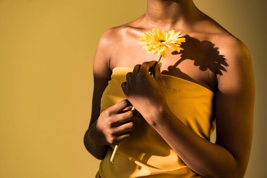 Gerbera Daisy Model with Yellow Daisy